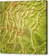 Earth Art 9511 Acrylic Print