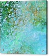Earth Bubble Acrylic Print