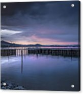 Earth Day Sunset Unsigned Acrylic Print