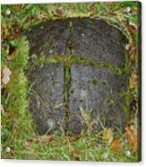 Earth Portal Acrylic Print