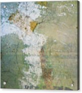 Earthly Possessions Acrylic Print