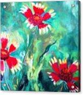 East Texas Wild Flowers Acrylic Print