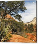 East Zion Afternoon Acrylic Print