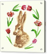 Easter Background With Rabbit Acrylic Print