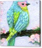 Easter Bird Acrylic Print