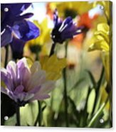 Easter Bouquet  Acrylic Print