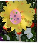 Easter Chick Decoration Acrylic Print