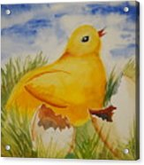 Easter Chick Acrylic Print