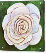 Easter Rose Acrylic Print