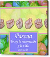 Easter Spanish Acrylic Print