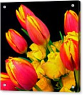 Easter Tulips And Roses Acrylic Print