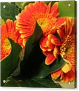 Easterjoy For You All Acrylic Print