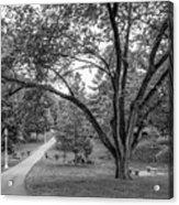 Eastern Kentucky University The Ravine Acrylic Print by University Icons
