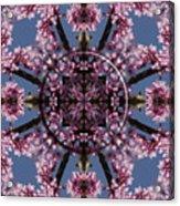 Eastern Red Bud Mandala Acrylic Print
