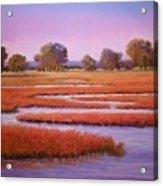 Eastern Shore Marsh Acrylic Print