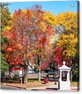 Easthampton Center In The Fall Acrylic Print