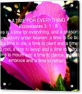 Ecclesiastes 3 A Time For Everything Acrylic Print