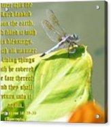 Ecclesiasticus Sixteen Twenty Nine Acrylic Print