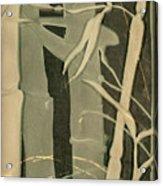 Eclipse Bamboo Acrylic Print