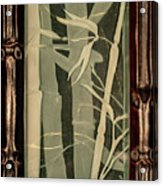 Eclipse Bamboo With Frame Acrylic Print