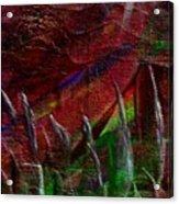 Eclpise II Acrylic Print