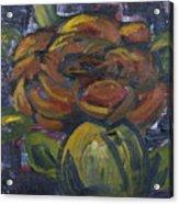 Ecuador Rose Acrylic Print