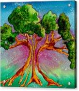 Eden's Tree Acrylic Print