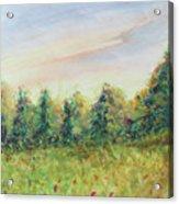 Edge Of Trees Acrylic Print