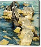 Edgewater Shores Acrylic Print