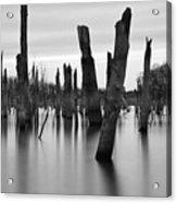Eerie Lake Acrylic Print
