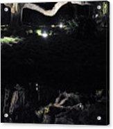 Eery Reflections Acrylic Print