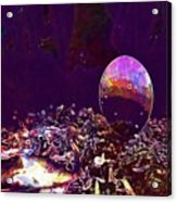 Egg Blue Birds Forest Spring  Acrylic Print