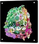 Egg Of Becoming Acrylic Print
