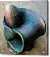 Eggplant Acrylic Print by Lonnie Tapia