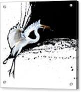 Egret 2 Acrylic Print