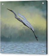 Egret Art I With Foreground Fog  Acrylic Print
