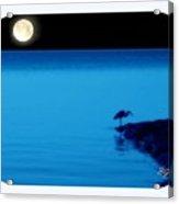 Egret In Full Moon Night Acrylic Print