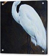 Egrets Series Four Acrylic Print