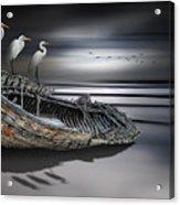 Egrets Watching Acrylic Print