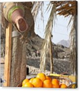 Egypt Oranges At The Oasis Acrylic Print