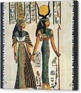 Egyptian Papyrus Acrylic Print