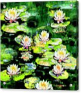 Eight #waterlilies Acrylic Print