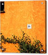 Eighteen On Orange Wall Acrylic Print