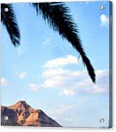 Ein Gedi Oasis In The Judean Desert Acrylic Print