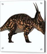 Einiosaurus Side Profile Acrylic Print