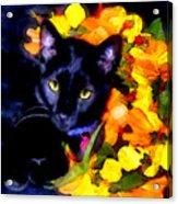 Einstein The Cat Acrylic Print