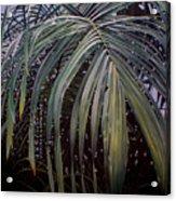El Calor De La Selva Acrylic Print