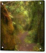 El Camino Acrylic Print