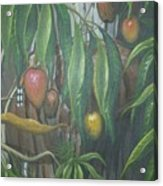 El Cucu De Mango Acrylic Print