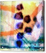 El Paso Del Tiempo Acrylic Print